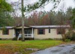 Foreclosed Home in Millsboro 19966 30924 CHESTNUT DR - Property ID: 1709280