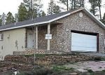 Foreclosed Home in Leadville 80461 21 COMSTOCK CT - Property ID: 2765716