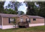 Foreclosed Home in Crawfordville 32327 52 DAMON CIR - Property ID: 3977125