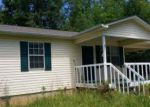 Foreclosed Home in Mineral Bluff 30559 136 MOUNT PLEASANT RD - Property ID: 3990372