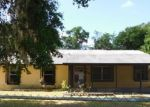 Foreclosed Home in Mount Dora 32757 1124 GRANT AVE - Property ID: 3990848