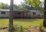 Foreclosed Home in Montrose 48457 13225 E STREET RD - Property ID: 4008004