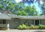 Foreclosed Home in Hayward 54843 12902 N BALSAM RD - Property ID: 4013299