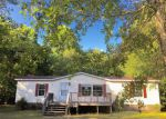 Foreclosed Home in Sneads Ferry 28460 119 RAVENALL ST - Property ID: 4013664