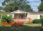 Foreclosed Home in Georgetown 19947 24156 CELTIC ST - Property ID: 4017058