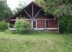 Foreclosed Home in Belfast 4915 128 SWAN LAKE AVE - Property ID: 4019329
