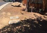 Foreclosed Home in Angels Camp 95222 733 GRINDING ROCK RD - Property ID: 4019899