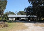 Foreclosed Home in Palatka 32177 4093 SILVER LAKE DR - Property ID: 4030464
