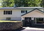 Foreclosed Home in Manistique 49854 7963W DODGE LAKE RD - Property ID: 4037393