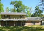 Foreclosed Home in Jasper 75951 31 CHESTNUT CIR - Property ID: 4042655
