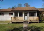 Foreclosed Home in Pioneer 37847 3189 STRAIGHT FORK RD - Property ID: 4042742