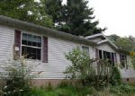 Foreclosed Home in Cascade 21719 14527 MARYLAND AVE - Property ID: 4043528