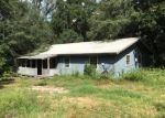 Foreclosed Home in Keystone Heights 32656 7190 SPANISH TRL - Property ID: 4044880