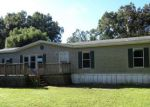 Foreclosed Home in Lakeland 33810 1728 QUAIL TRL - Property ID: 4049616