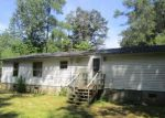 Foreclosed Home in Zebulon 27597 100 PARKS AVE - Property ID: 4052627