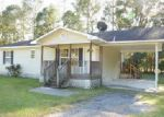 Foreclosed Home in Brunswick 31525 104 EAGLES NEST - Property ID: 4058983