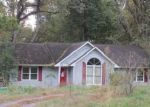 Foreclosed Home in Kevil 42053 1937 BROOKING RD - Property ID: 4064854