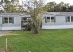 Foreclosed Home in Mulberry 33860 4112 SHADY HAMMOCK DR - Property ID: 4078373
