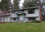 Foreclosed Home in Arlington 98223 20616 64TH DR NE - Property ID: 4102483