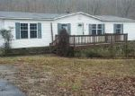 Foreclosed Home in Shipman 22971 1934 FINDLAY MOUNTAIN RD - Property ID: 4104056