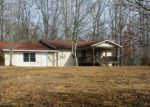 Foreclosed Home in Mineral Bluff 30559 4118 SALEM RD - Property ID: 4105187