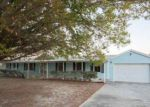Foreclosed Home in Mount Dora 32757 4115 FRANCES ANN CT - Property ID: 4107177