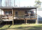 Foreclosed Home in Church Road 23833 3020 CHESDIN LAKE RD - Property ID: 4115018