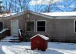Foreclosed Home in Baldwin 49304 4470 S SHERIDAN AVE - Property ID: 4122064
