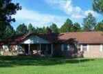 Foreclosed Home in Nicholls 31554 9165 HIGHWAY 32 E - Property ID: 4127468