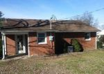 Foreclosed Home in Buena Vista 24416 114 LINDEN CIR - Property ID: 4138815