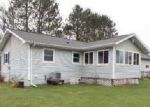 Foreclosed Home in Iron River 49935 1907 IRON LAKE RD - Property ID: 4142734