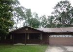 Foreclosed Home in Edgewater 32132 1715 SABAL PALM DR - Property ID: 4154905