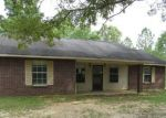 Foreclosed Home in Lumberton 39455 16 JESLAN TRL - Property ID: 4158388