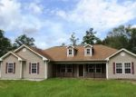 Foreclosed Home in Ridgeland 29936 6011 FIRETOWER RD - Property ID: 4159910