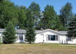 Foreclosed Home in Brutus 49716 7783 MAPLE RIVER RD - Property ID: 4160217
