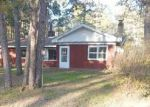 Foreclosed Home in Britt 55710 7418 N FOREST LN - Property ID: 4160819