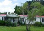 Foreclosed Home in Rich Square 27869 185 BLAKE DR - Property ID: 4192214