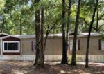 Foreclosed Home in Dunnellon 34432 10896 SW 155TH ST - Property ID: 4196238