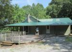 Foreclosed Home in Spring City 37381 289 WILDER RD - Property ID: 4196256