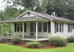 Foreclosed Home in Andrews 29510 353 CUMBIE RD - Property ID: 4197287
