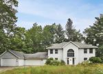 Foreclosed Home in Lake Tomahawk 54539 6970 REED FARM LN - Property ID: 4199028