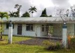 Foreclosed Home in Pahoa 96778 16-2075 PUHALA DR - Property ID: 4199622