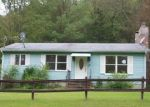 Foreclosed Home in Baltic 6330 631 HANOVER RD - Property ID: 4200591