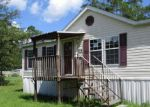 Foreclosed Home in Interlachen 32148 214 MEDLOCK ST - Property ID: 4202739