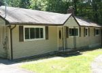 Foreclosed Home in Glen Spey 12737 533 WHITE RD - Property ID: 4205099