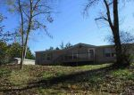 Foreclosed Home in Bybee 37713 1070 PHILLIPS HOLLOW RD - Property ID: 4205429