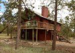 Foreclosed Home in Buena Vista 81211 16065 BURT GULCH RD - Property ID: 4206480