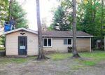 Foreclosed Home in Brethren 49619 13891 BRETHREN HTS - Property ID: 4206627