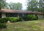 Foreclosed Home in Branch 49402 1430 S WALHALLA RD - Property ID: 4207169