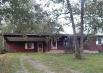 Foreclosed Home in Falcon 65470 38926 DAWN RD - Property ID: 4208427